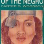 Carter G Woodson: The Mis-Education of the Negro Audio Book Part 4