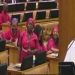 Deputy Speaker In South African Parliament Calls The EFF Anarchists